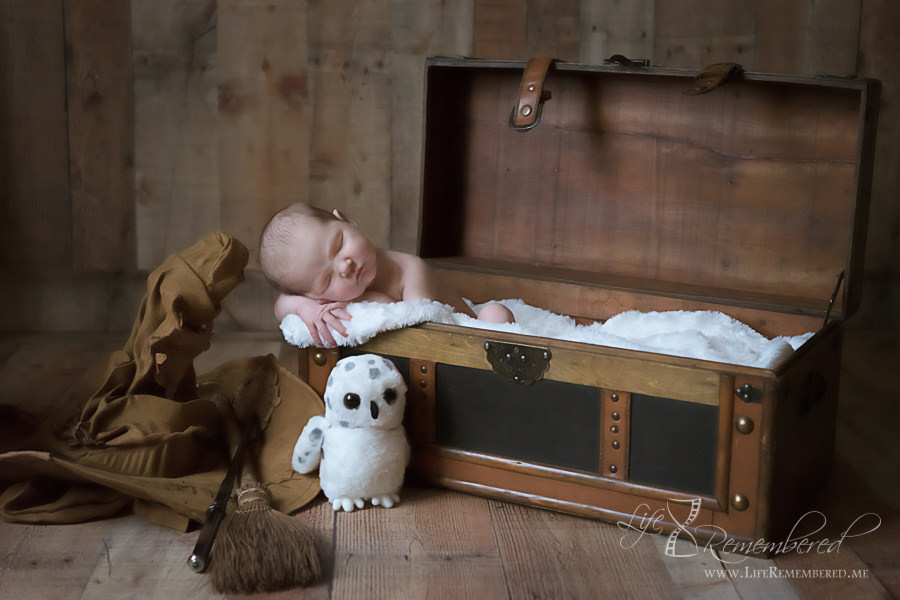 Harry Potter Nursery Tips