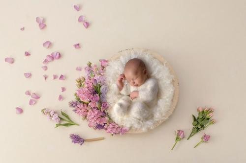 Minneapolis Baby Photographer Portfolio